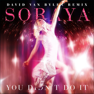 You Didn't Do It (David Van Bylen Day Remix)
