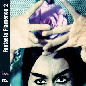 FantasÍa Flamenca 2