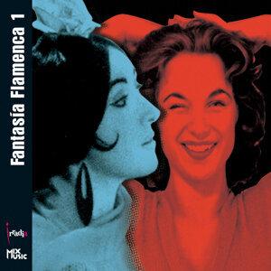 FantasÍa Flamenca 1