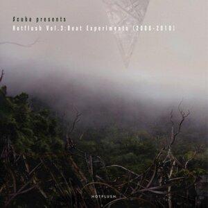 Scuba Presents Hotflush, Vol. 3: Beat Experiments [2008 - 2010]