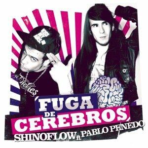 Fuga de Cerebros (Original Motion Picture Soundtrack)