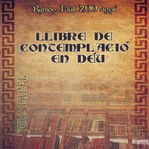 Llibre de Contemplació en Déu