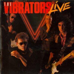 The Vibrators: Live