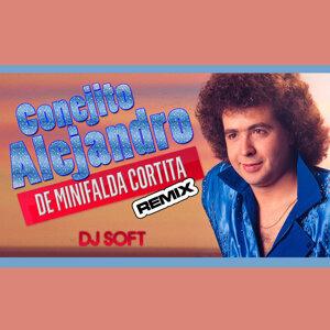 De Minifalda Cortita (Remix)