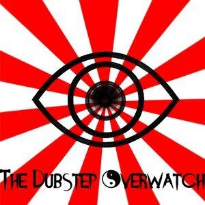 The Dubstep Overwatch
