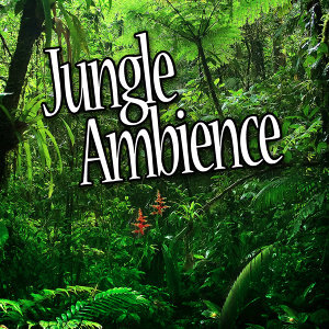 Jungle Ambience (Nature Sounds)