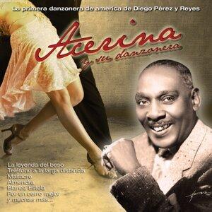 15 Grandes Éxitos de Acerina - La Primera Danzonera de Diego Pérez y Reyes