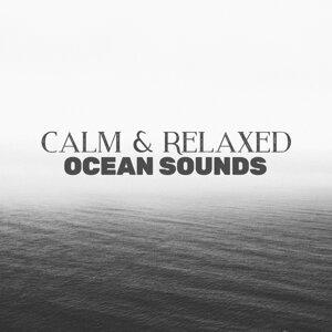 Calm & Relaxed Ocean Sounds