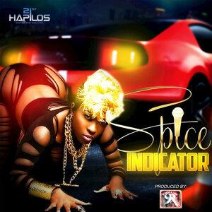 Indicator - Single