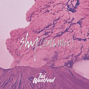 Shy - 2016 Mix