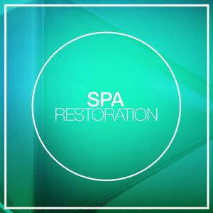 Spa Restoration