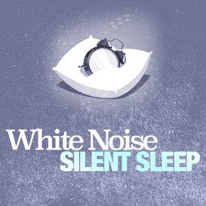 White Noise: Silent Sleep