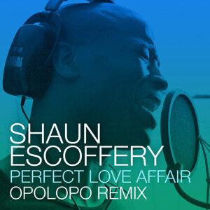 Perfect Love Affair (Opolopo Remix)