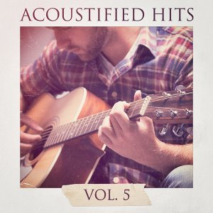 Acoustified Hits, Vol. 5