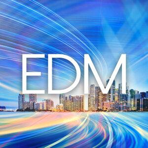 EDM / House / Techno / 2015