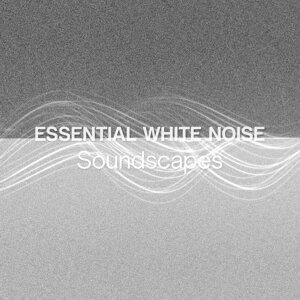 Essential White Noise Soundscapes
