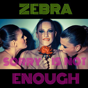 Sorry Is Not Enough - Single