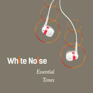 White Noise: Essential Tones
