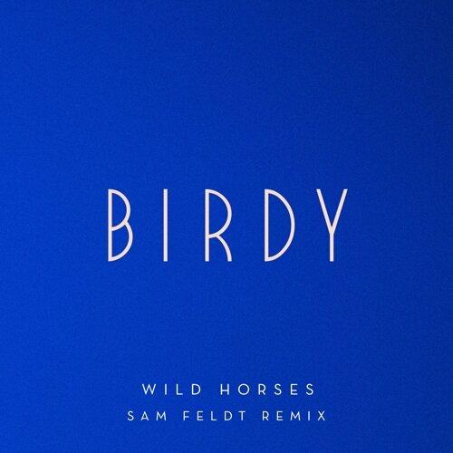 Wild Horses - Sam Feldt Remix