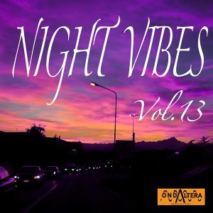 Night Vibes, Vol. 13