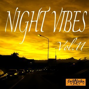 Night Vibes, Vol. 11