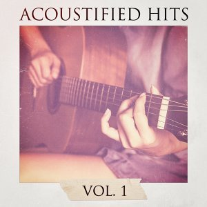 Acoustified Hits, Vol. 1