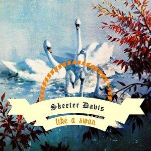 Like A Swan