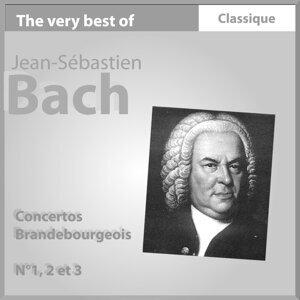 Bach : Concertos Brandebourgeois No. 1, 2 & 3