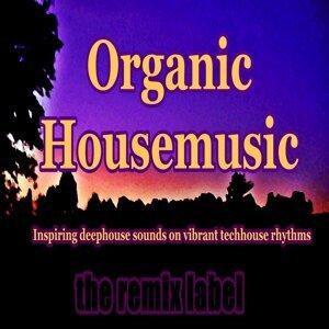 Organic Housemusic (Inspiring Deephouse Sounds on Vibrant Techhouse Rhythms Album)