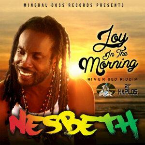 Joy in the Morning - Single