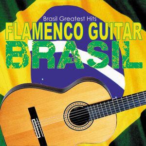 Flamenco Guitar Brasil