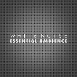 White Noise: Essential Ambience