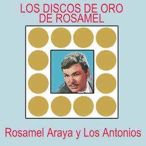 Los Discos de Oro de Rosamel