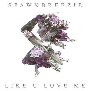 Like U Love Me