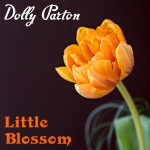 Little Blossom