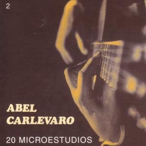 20 Microestudios