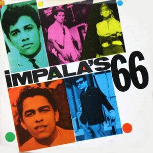 Impala's 66