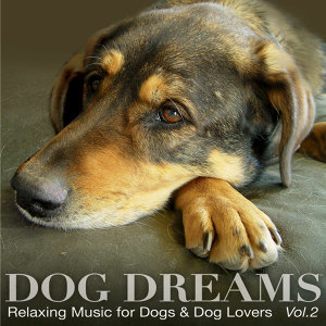 DOG DREAMS - Relaxing Music for Dogs & Dog Lovers Vol.2