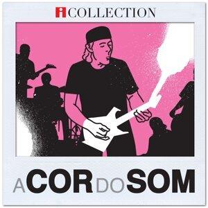 A Cor do Som - iCollection