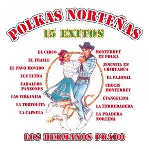 Polkas Norteñas: 15 Éxitos