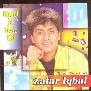 Bhool Ja Mere Dil - Best Of