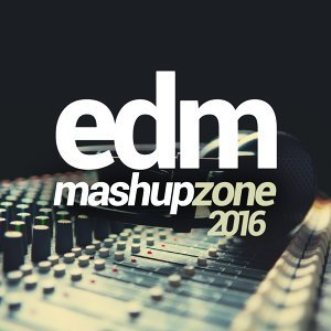 EDM Mashup Zone 2016