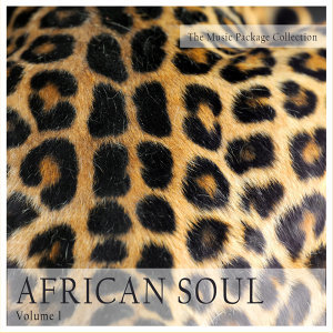 The Music Package Collection: African Soul, Vol. 1