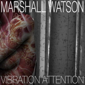 Vibration Attention
