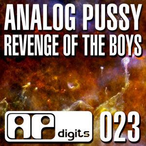 Revenge of the Boys - Single