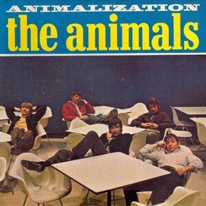 Animalization