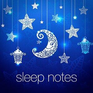 Sleep Notes