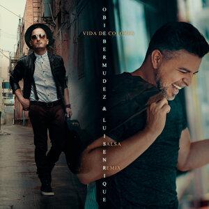 Vida de Colores (Salsa Remix) [feat. Luis Enrique]