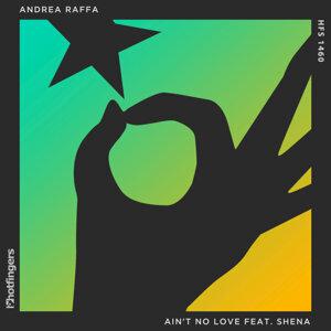 Ain't No Love (feat. Shena)