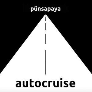 Autocruise